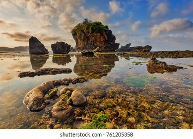 The beautiful corals at Pantai Jungwok, Gunung Kidul, Yogyakarta, Indonesia