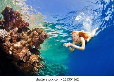 beautiful corals in the sea