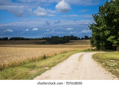 A beautiful country landscape with a wheat fields stretching into distance. Inspiring rural scenery at the end of summer.
