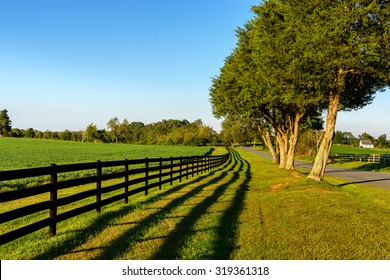 A beautiful country road showing a field of soybeans, wooden fence and a nice defined shadow of the fence. Just before sunset