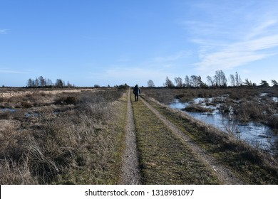 Beautiful country road with a walking person straight through a great plan landscape at the swedish island Oland