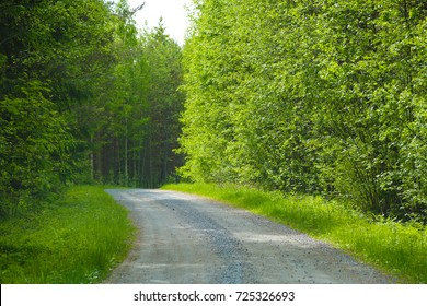 Beautiful Country roads and nature