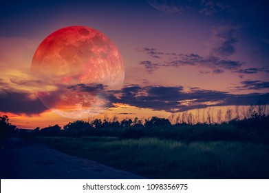Beautiful countryside area at night. Attractive red super moon or blood moon on dark sky with cloudy above silhouettes of trees. Serenity nature background. The moon taken with my camera.