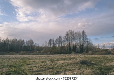 beautiful countryside landscape. natural environmental detail view in latvia - vintage film look