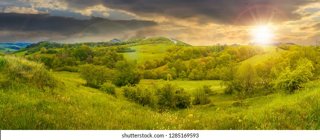 beautiful countryside panorama in springtime at sunset. grassy hills and meadows. trees with green foliage on hillsides. mountain top in the distance. wonderful nature scenery of Carpathians
