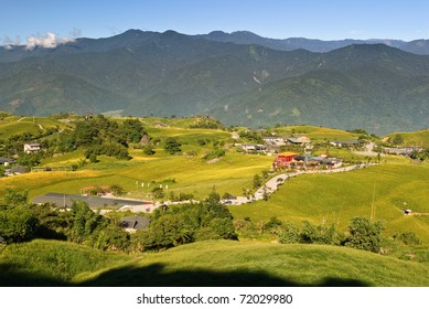 Beautiful countryside rural scenery with golden plants under blue sky.