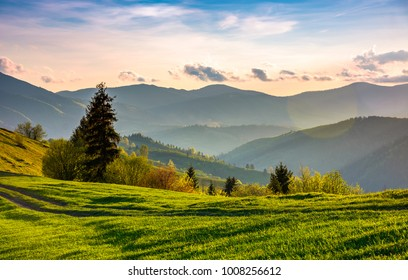 beautiful countryside in springtime. green grassy slopes of mountainous area in evening