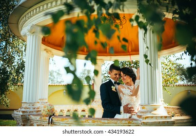 Beautiful couple, bride and groom posing (embracing) near white column. The circular pavilion with columns