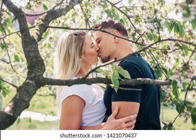 Beautiful couple kissing under blooming cherry tree in garden on first may