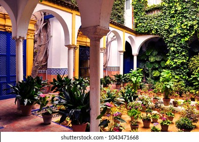 Beautiful courtyard in Santa Cruz barrio of Seville, Spain