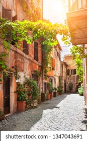 Beautiful cozy street in Trastevere district in Rome, Italy. Old buildings with green decorative plants in the morning sunlight. Travel and vacation