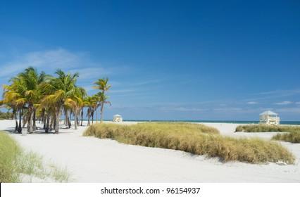 Beautiful Crandon Park Beach in Key Biscayne in Miami.
