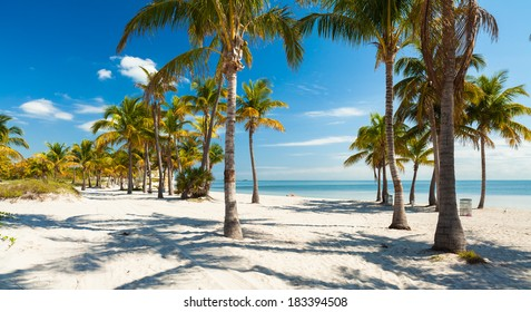 Beautiful Crandon Park Beach located in Key Biscayne in Miami.