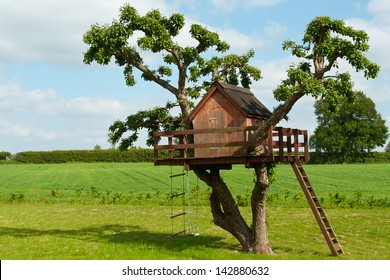 Beautiful creative handmade tree house for kids in backyard of a house