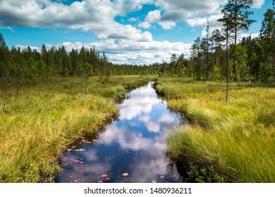 Beautiful creek in the wilderness of Sweden, region Dalarna nearby Fredriksberg