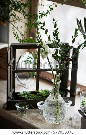 Beautiful Crystal Vase Clear Water Standing Stock Photo Edit Now