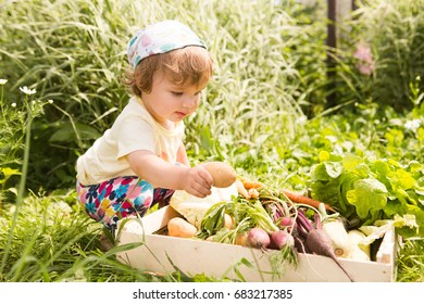 Beautiful curly baby girl sitting with  wooden crate of  vegetables in the garden.