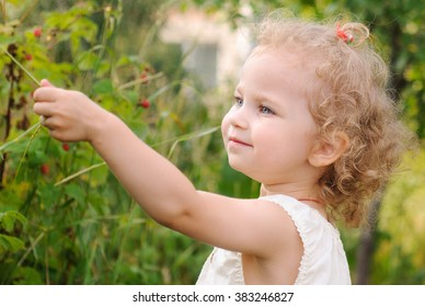 beautiful curly girl holding a grass on a background of berry bushes