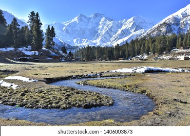 """Beautiful curved streams at Fairy Meadows"""".Nanga Parbat,the western anchor of the Himalayas,locally known as Diamer,the ninth highest mountain in the world.Located in Pakistan,Gilgit Baltistan region"""