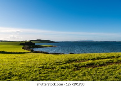 Beautiful curving shoreline of lush green, grassy fields under a sunny blue sky along Strangford Lough in Northern Ireland