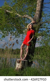 Beautiful dancer in red dress standing at a tree and sunbathing