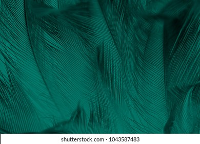 Emerald Images Stock Photos Vectors Shutterstock