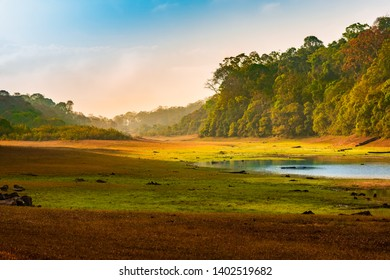 beautiful dawn landscape with wild forest and lake in India. Periyar National Park, Kerala, India