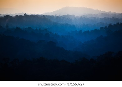 The beautiful dawn in the tropical rain forest, Thailand