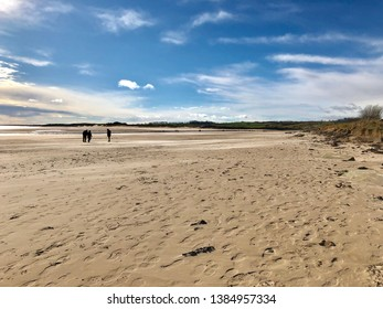 Beautiful day at Alnmouth beach