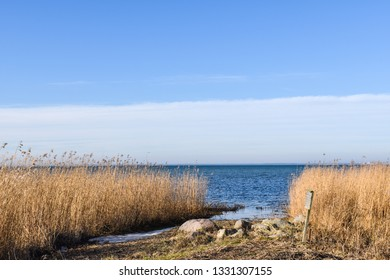 Beautiful day in springtime by the coast of the swedish island Oland