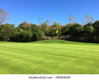 Beautiful day time view of public golf course green hole with ball placement for putt into cup under flag for score