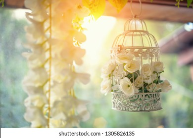 beautiful decor, white cage with flowers hanging by the window