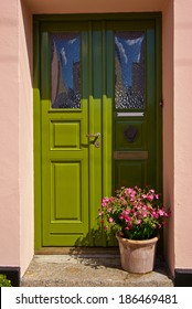 Beautiful decorated green front door with a blooming flowers in a pot
