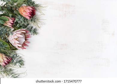 Beautiful decorative pink king protea flower surrounded by pink ice proteas and wattle leaves, creating a floral border on a rustic white background.