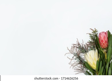 Beautiful decorative vanilla ice protea flower,  pink ice protea flower and wattle leaves, create a floral border on a rustic white background.
