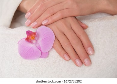 Beautiful delicate manicure on female hands. The picture of hands lying on the white towel with purple orchid.