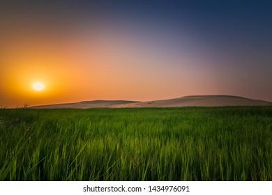 Beautiful Desert landscape view in Dammam Saudi Arabia