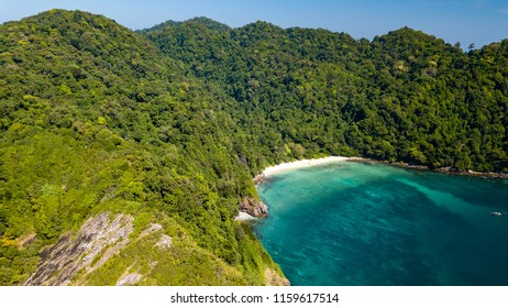 A beautiful, deserted tropical beach surrounded by lush green jungle and tropical coral reef