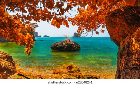 Beautiful destinations beach in colorful autumn trees, Andaman sea, Krabi province, Thailand