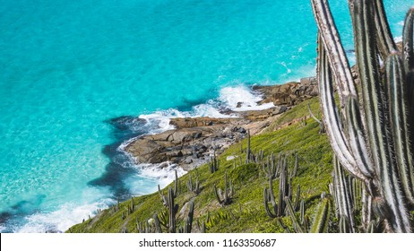 Beautiful detail of Pontal do Atalaia paradise coastline with green vegetation and clear sea water - Arraial do Cabo, Rio de Janeiro,  Brasil
