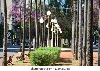 Beautiful details of central region of Goiania on a sunny day