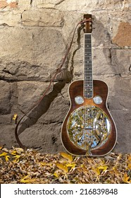 Beautiful Dobro guitar leaning against a wall