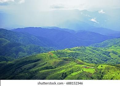 Beautiful in Doi tong Mountain in Thailand