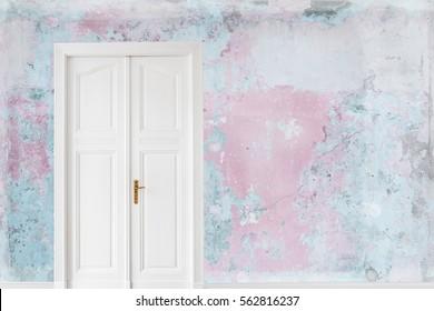beautiful door on old wall , copy space