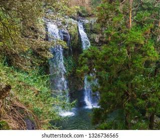 Beautiful double waterfall at Salto da Farinha falling from rocks in lush green rainforest vegetation, Sao Miguel, Azores, Portugal
