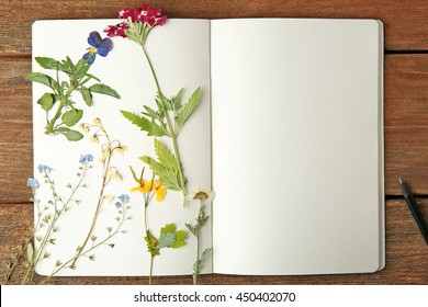 Beautiful dried flowers in notebook on wooden background