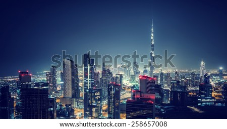 Beautiful Dubai cityscape birds