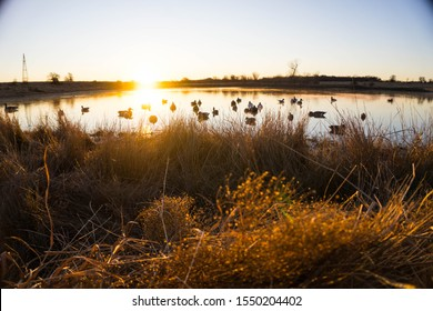 Beautiful duck hunting scene in front of a early morning Texas sunrise