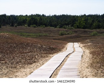 Beautiful Dune at Curonian Spit near Nida, Neringa, Lithuania, awesome nature summer landscape with wooden path, dry grass and lot of sand