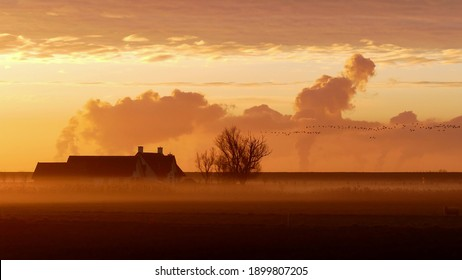 Beautiful Dutch farmhouse on a polder in the Netherlands in an extraordinary sunrise. Dark silhouette of a tree against the orange sky. Flying wild geese on the background of colorful clouds